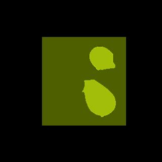 CSE Certified sustainable enterprise