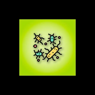 Vírusy, baktérie , plesne